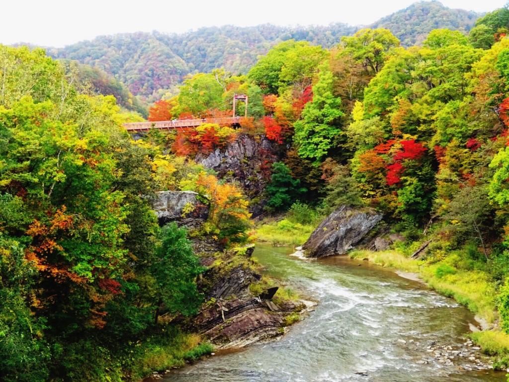 夕張 滝の上公園の紅葉