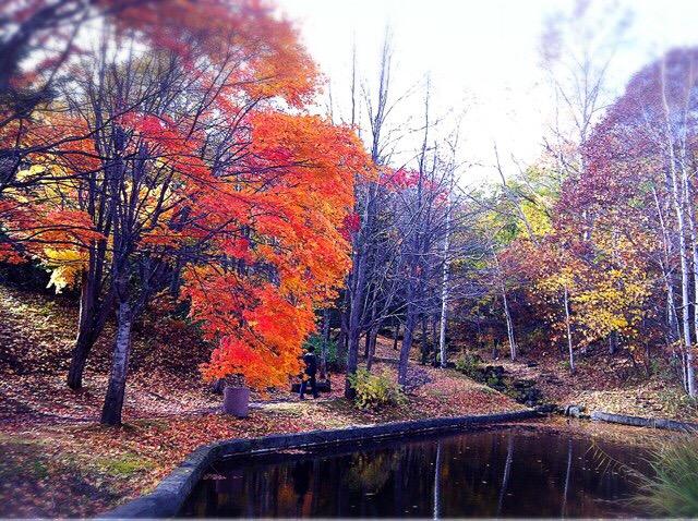 札幌芸術の森の野外美術館は森の中を散策しながらアートに触れることができるスポット