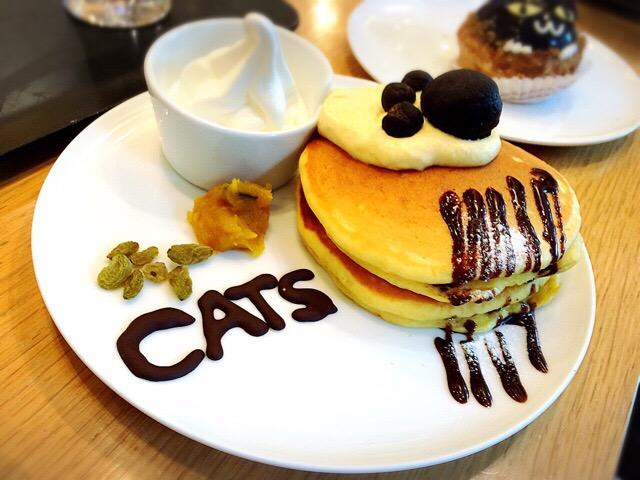 CATSを観劇したときに頂いたコラボスイーツ!