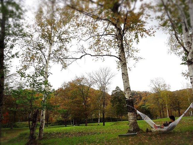 秋の紅葉キャンプを楽しみました!