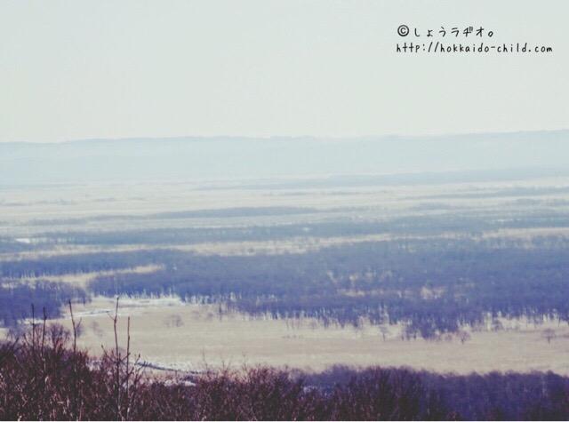 釧路湿原!