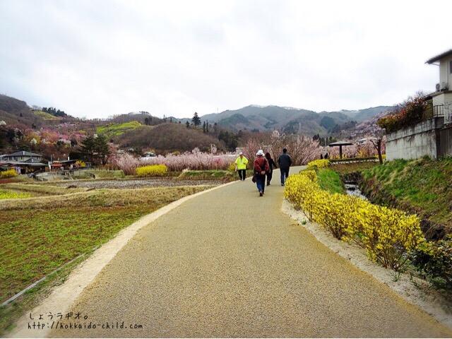 花見山公園までの道。