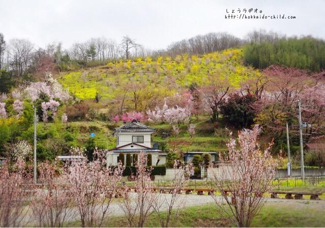 民家と野山の花々
