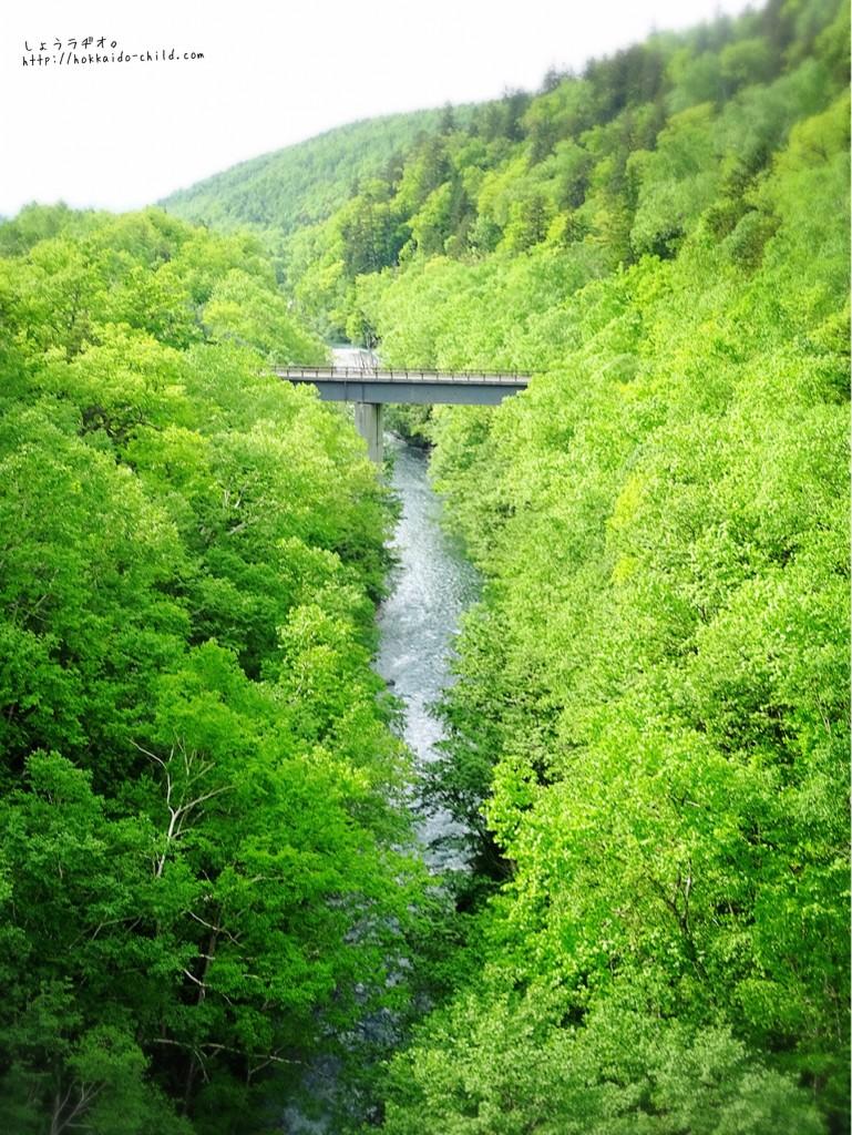 滝と反対側の景色