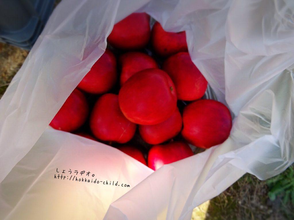 購入したリンゴ!
