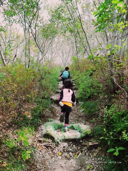 登り始めてすぐの山道
