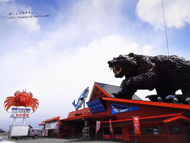 熊が屋根の上に!!