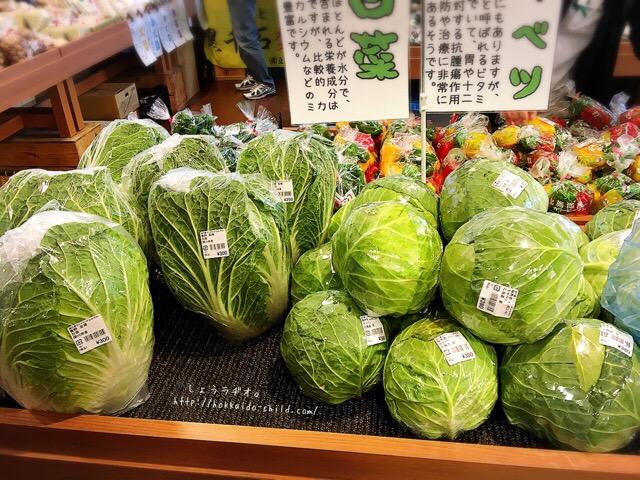 新鮮で美味しいお野菜もたくさん!