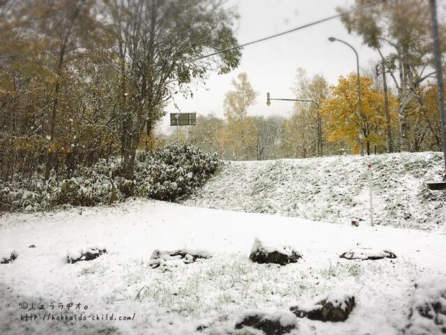 翌朝は雪景色!