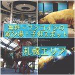 【札幌エリア】無料・ワンコインの室内の遊び場・子どもスポットのまとめ!雨の日も雪の日もOK!