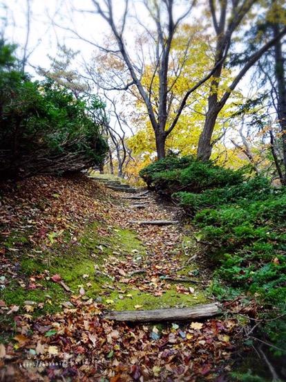 坂を登っていきます