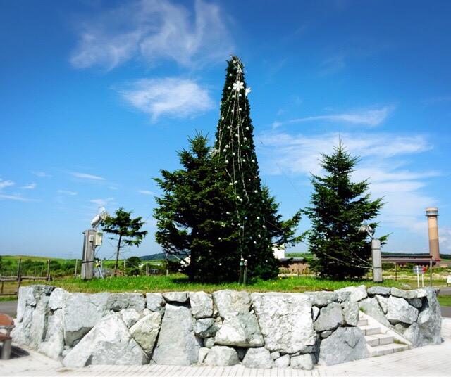 真ん中にクリスマスツリー発見!