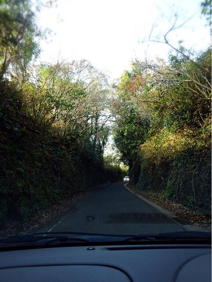 緑のトンネルの道は鉄道跡