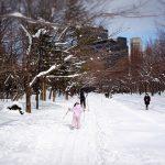 「中島公園」で歩くスキー(クロスカントリー)をしよう!貸し出し・利用は無料!札幌の都心部の公園の冬の楽しみ