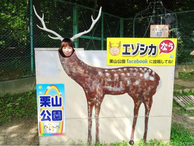 栗山公園 エゾシカの顔ハメパネル