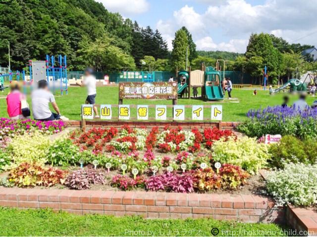 栗山公園の栗山監督花壇