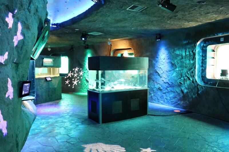 オホーツクタワー内にある水族館
