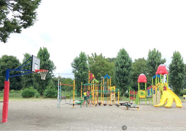 小山市総合運動公園 遊具