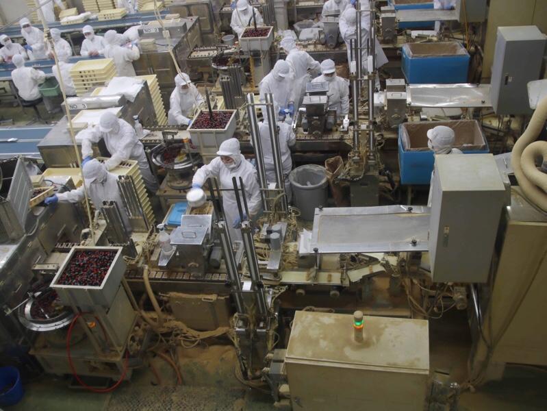 桔梗信玄餅の製造工程