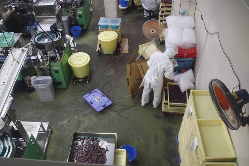 桔梗信玄餅工場テーマパーク 自由見学