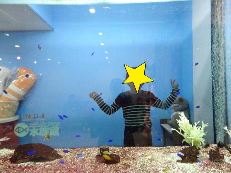 サンピアザ水族館 記念撮影用の水槽