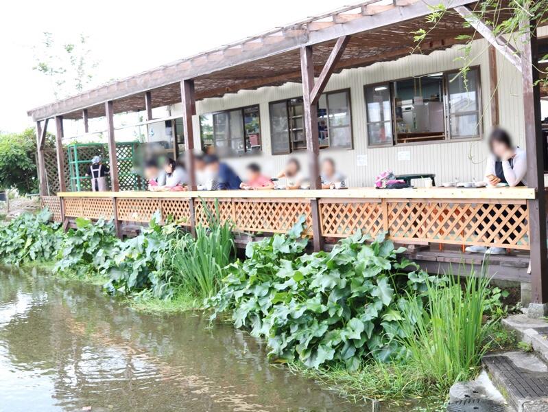 菊水苑 川辺のカウンター席