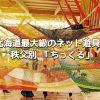 秩父別「ちっくる」は屋内の無料の遊び場!北海道内最大級のネット遊具がすごすぎる!