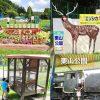 栗山公園は無料の動物園もある楽しい公園!日本一の顔はめパネルやSLファンも必見
