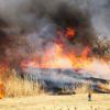 【渡良瀬遊水地】ヨシ焼きを見てきました!真っ黒な空に燃え広がる炎は圧巻の景色!